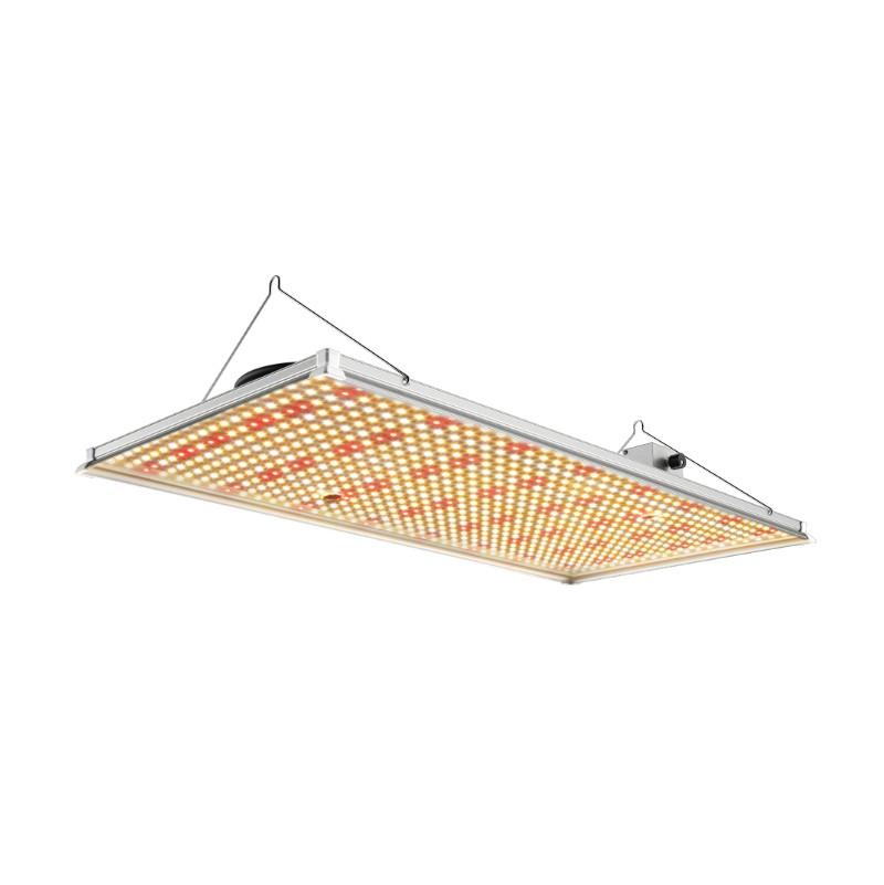 240W 320W Board LED Grow Light